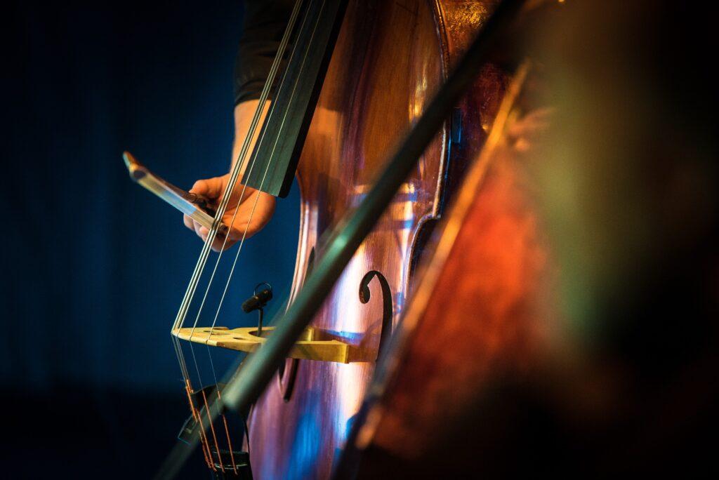 Clos up photo cello